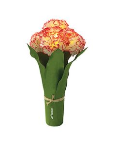 Light Up 5 LED Carnation Bouquet